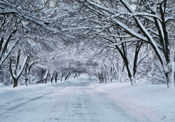 winter-snow-scene-photography-wallpaper