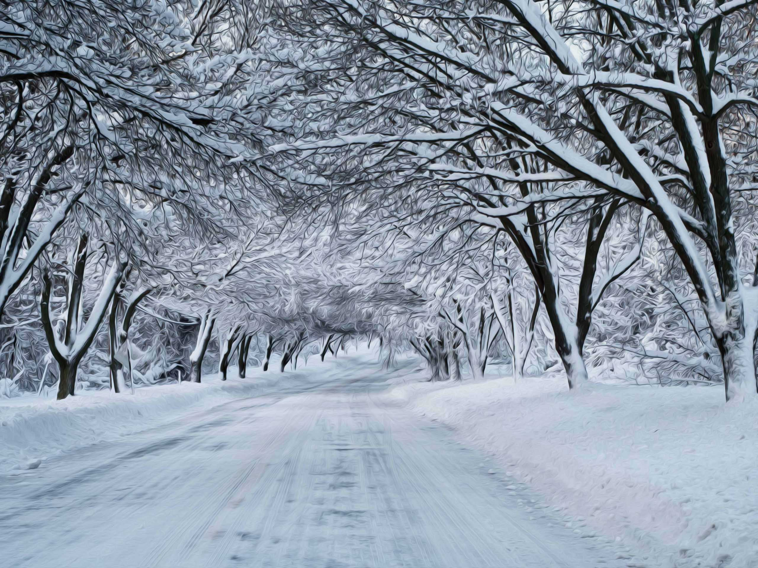 winter snow scene photography wallpaper