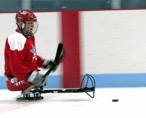 Sledge hockey player