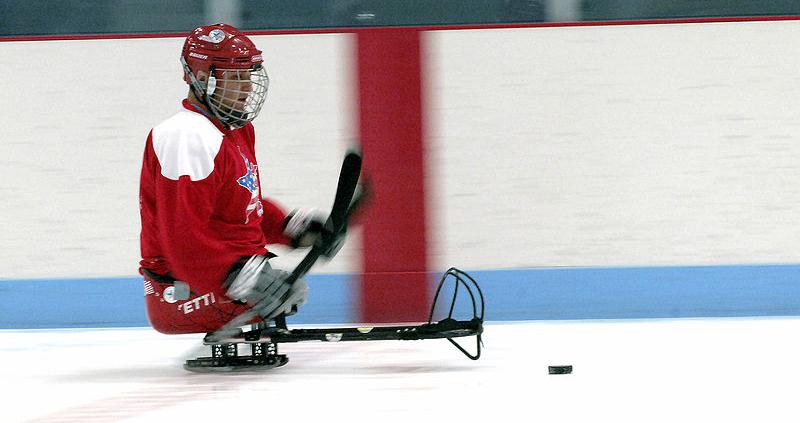 Sledge hockey player