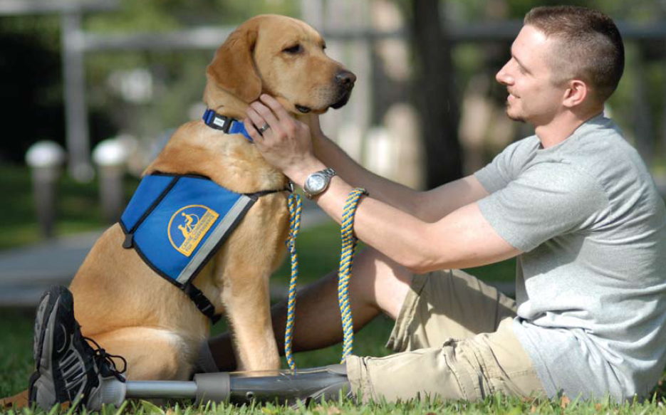 jeffrey adams and cci service dog sharif