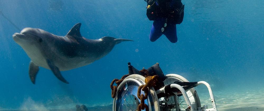 Accessible scuba diving