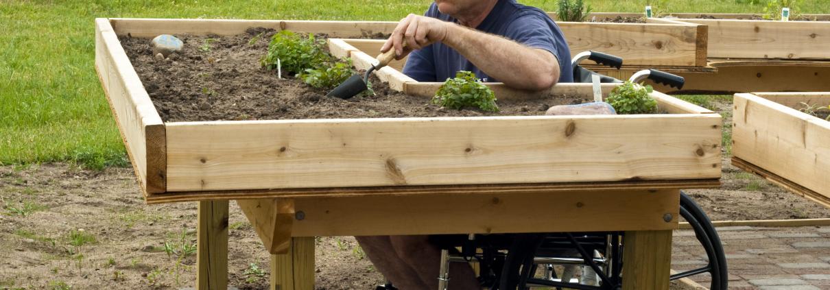 iStock 153495991 wheelchair garden plant scaled 1