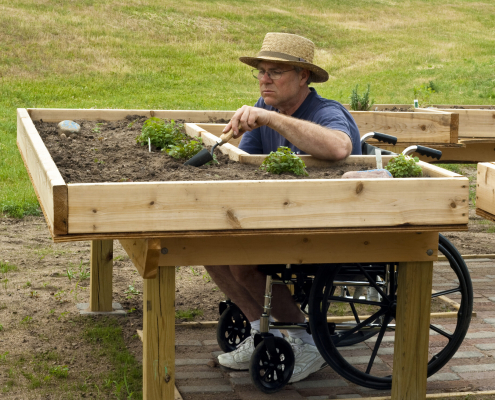 iStock 153495991 wheelchair garden plant scaled 1